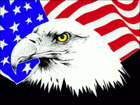normal_4th_July_eagle_flag